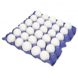 بيض كويتي طبق حجم 70/60