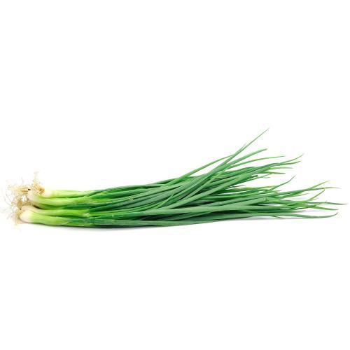 بصل أخضر