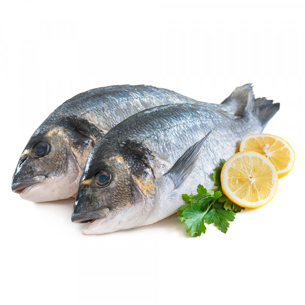 TURKISH CHILLED DENISE FISH - KG